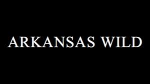 Arkansas Wild